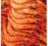 Gamba Salada